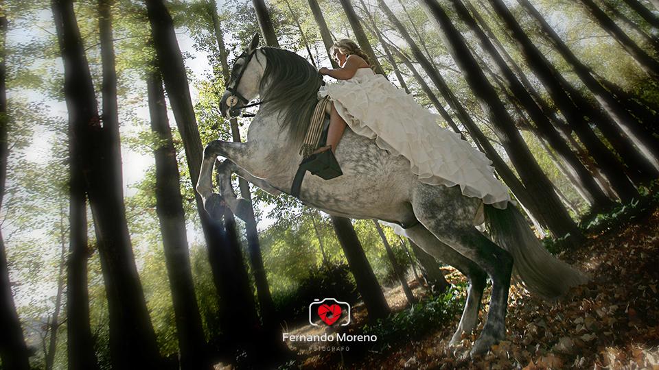 fotografo de bodas en almeria 020